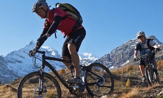 Bici de montaña en naturaleza