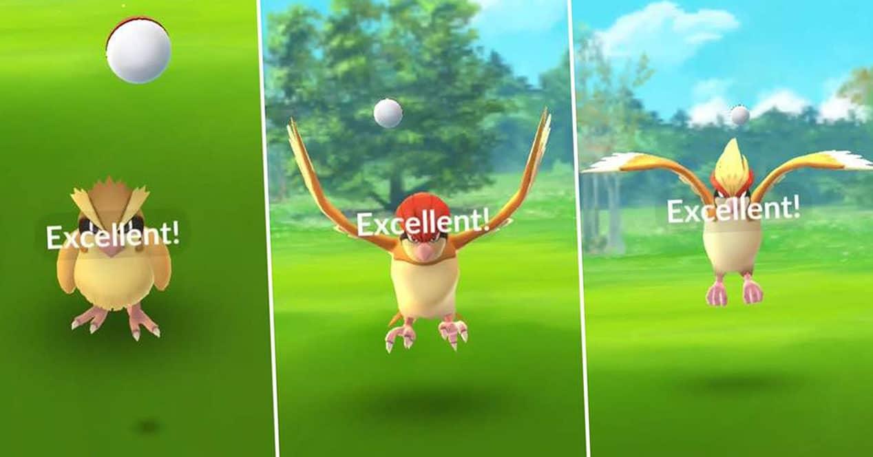 lanzamiento excelente poké ball