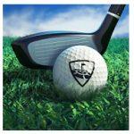 Icono del juego WGT Golf